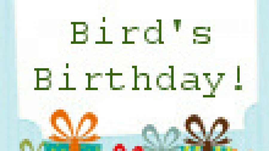 Happy Birthday Freebies and Specials