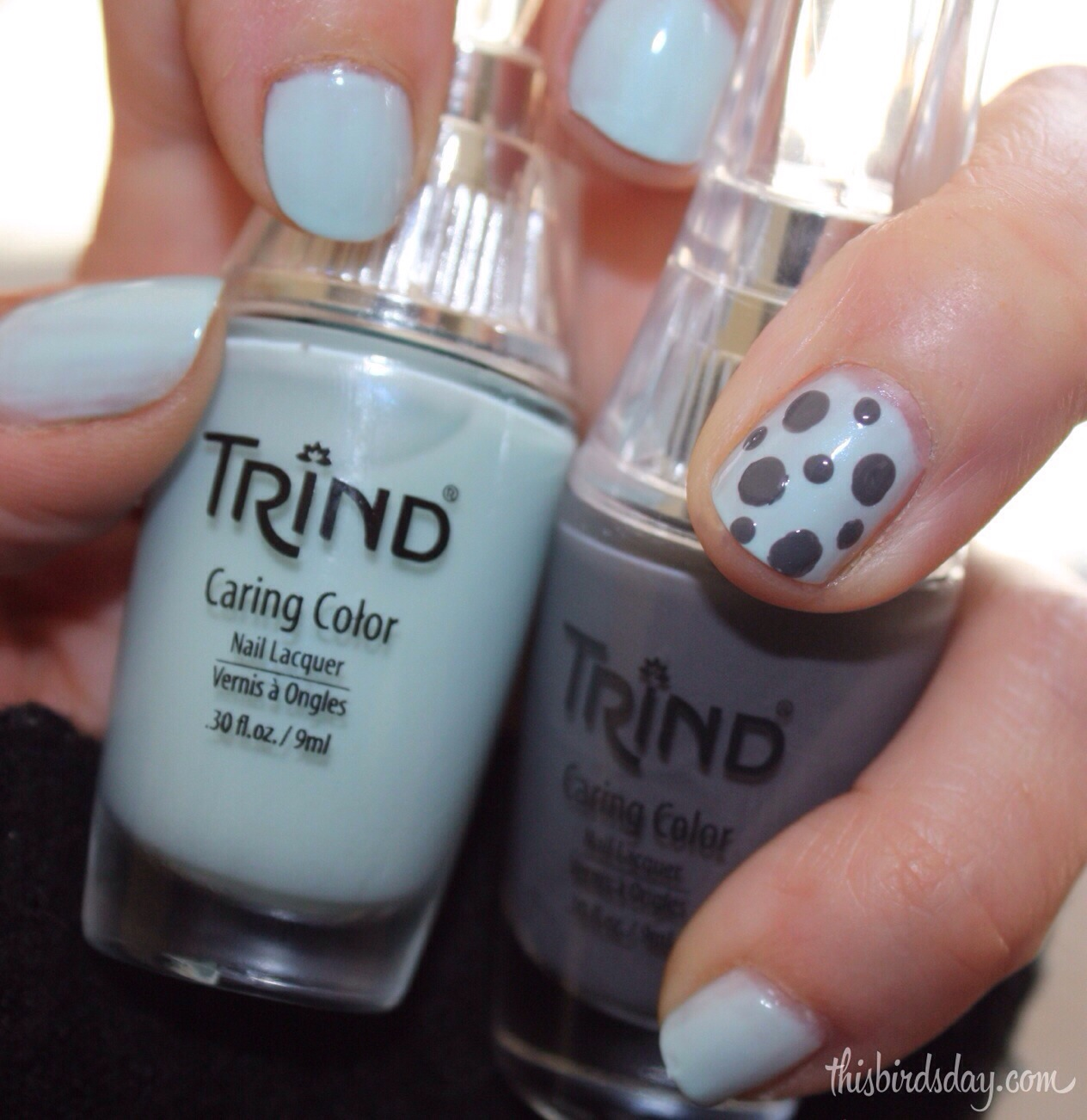 Simple Nail Art with Trind | This Bird\'s Day