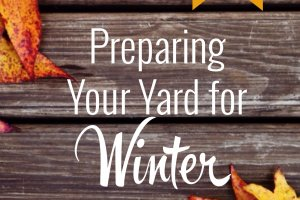 Tips for preparing your yard for the winter