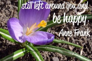 Think of all the beauty still left around you and be happy. Anne Frank Photo copyright Sheri Landry