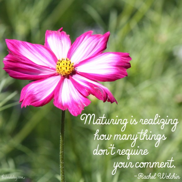 """Maturing is realizing how many things don't require your comment."" - Rachel Wolchin"