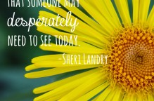 """Be the ray of light that someone may desperately need to see today."" Sheri Landry, photo copyrights: Sheri Landry"