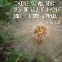 """Sometimes you will never know the value of a moment until it becomes a memory."" Dr Seuss. Photo Copyright Sheri Landry"