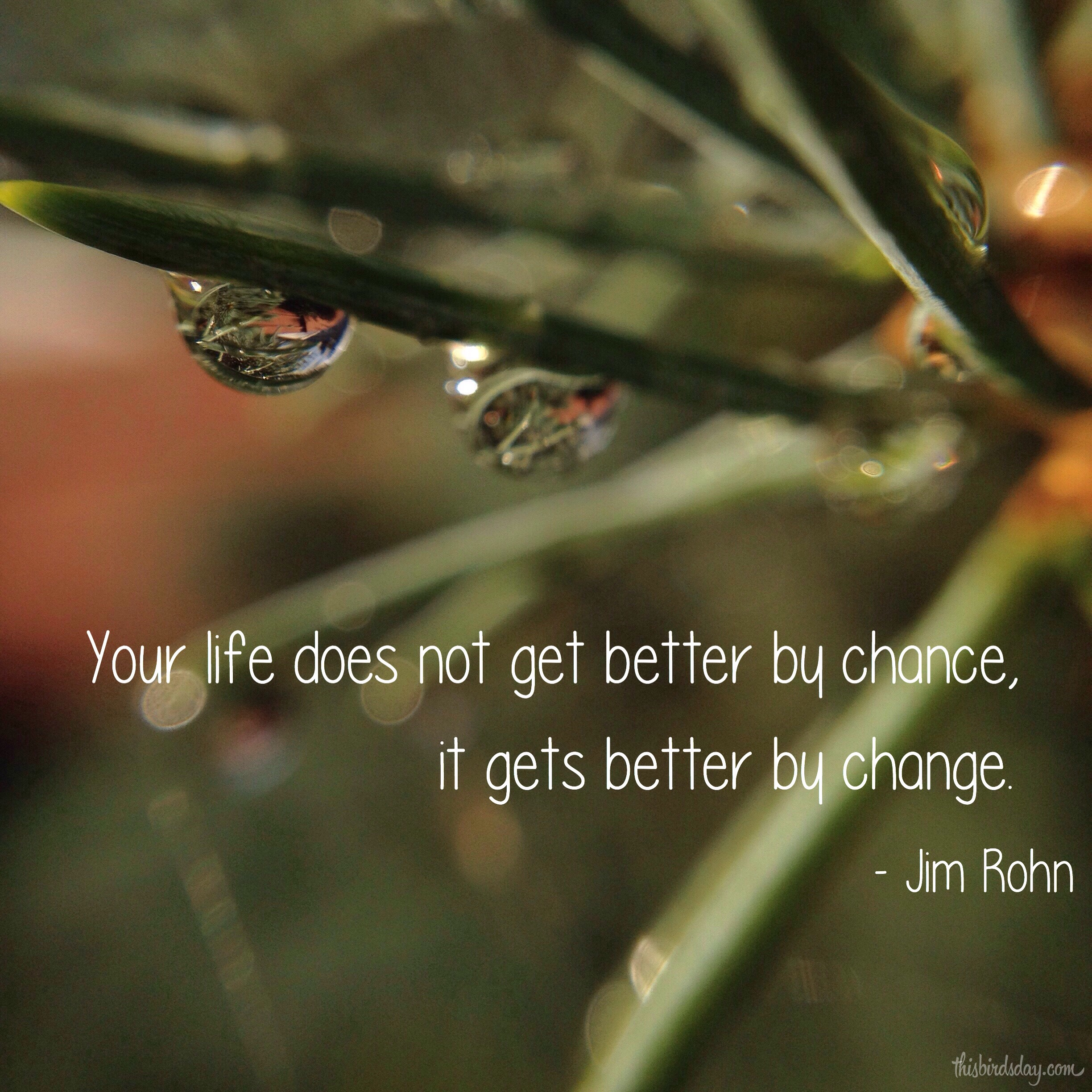 """""""Your life does not get better by chance, it gets better by change."""" Jim Rohn Photo copyrights Sheri Landry"""