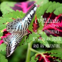 Attitude is the difference between and ordeal and an adventure.