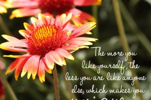 """The more you like yourself, the less you are like anyone else, which makes you unique."" Walt Disney Photo copyright Sheri Landry"