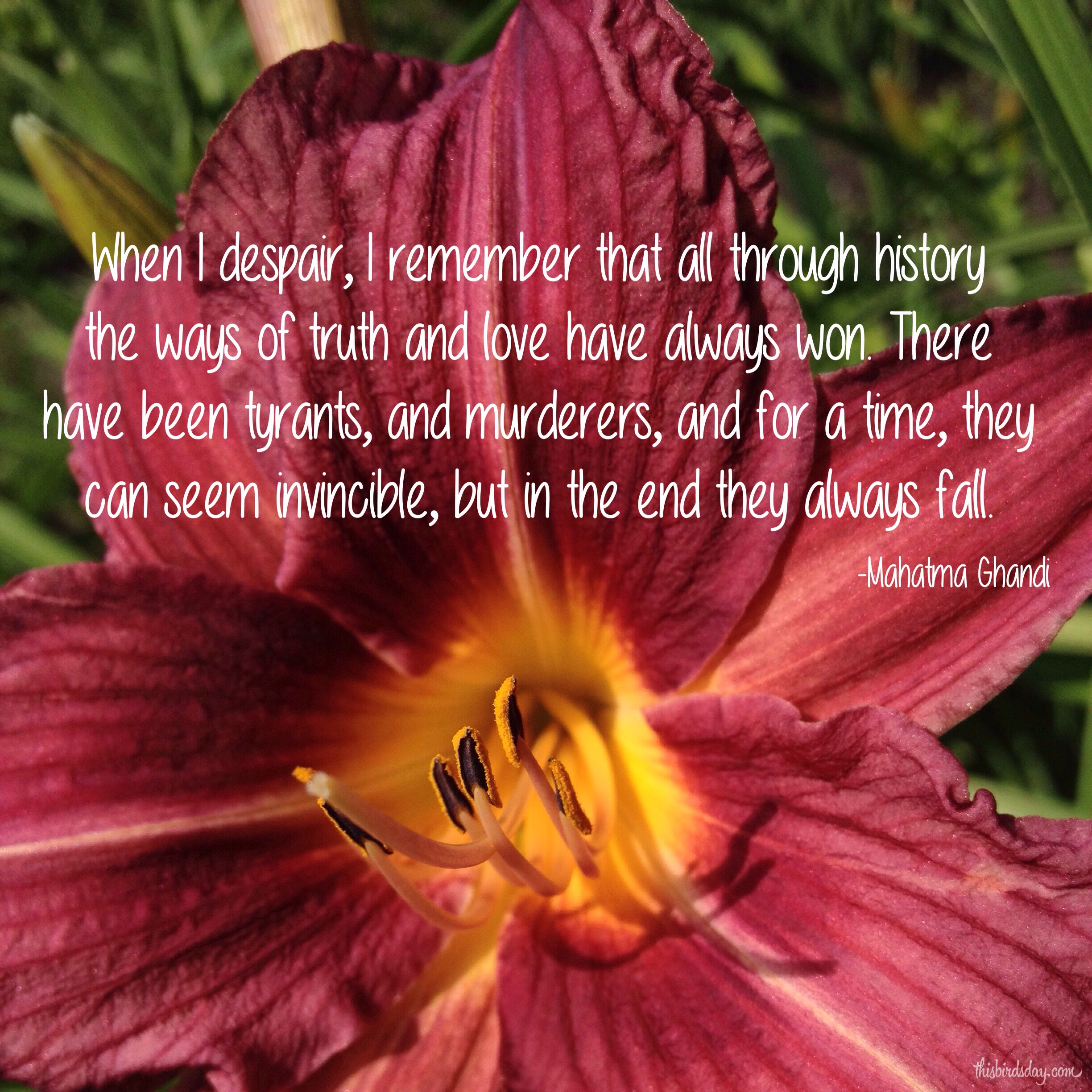 """""""When I despair, I remember that all through history the ways of truth and love have always won. There have been tyrants, and murderers, and for a time they can seem invincible, but in the end they always fall."""" Mahatma Ghandi. Photo copyright Sheri Landry"""