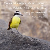 """My destination is no longer a place, rather a new way of seeing."" Marcel Proust quote. Photo copyright Sheri Landry"