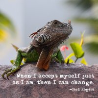 """When I accept myself just as I am, then I can change."" Carl Rogers Photo Copyright Sheri Landry"