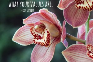 """It's not hard to make decisions when you know what your values are."" Roy Disney Photo copyright Sheri Landry"