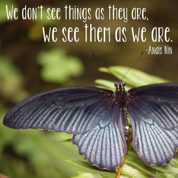 """We don't see things as they are, we see them as we are."" Anais Nin Photo copyright Sheri Landry"