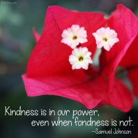 """Kindness is in our power, even when fondness is not."" Samuel Johnson Photo copyright Sheri Landry"