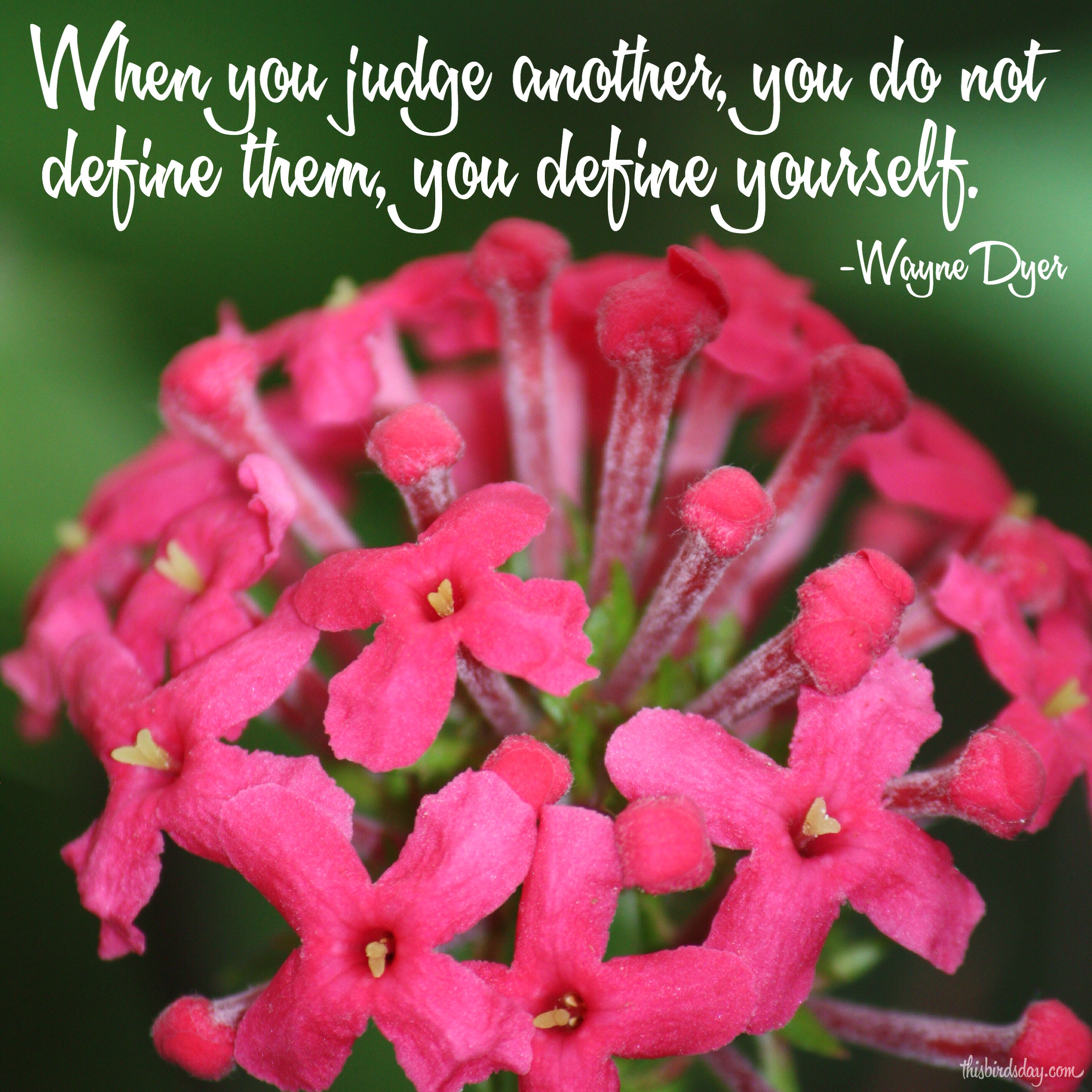"""When you judge another, you do not define them, you define yourself."" Wayne Dyer Photo copyrights Sheri Landry"