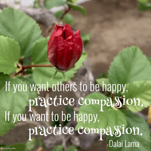 """""""If you want others to be happy, practice compassion. If you want to be happy, practice compassion."""" Dalai Lama Photo copyright Sheri Landry"""