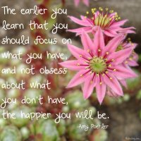 """""""The earlier you learn that you should focus on what you have, and not obsess about what you don't have, the happier you will be."""" Amy Poehler Photo copyright Sheri Landry"""