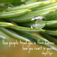 """""""How people treat you is their karma; how you react is yours."""" Wayne Dyer Photo copyright Sheri Landry"""