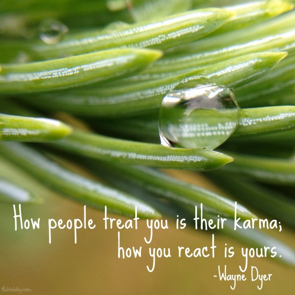 """How people treat you is their karma; how you react is yours."" Wayne Dyer Photo copyright Sheri Landry"