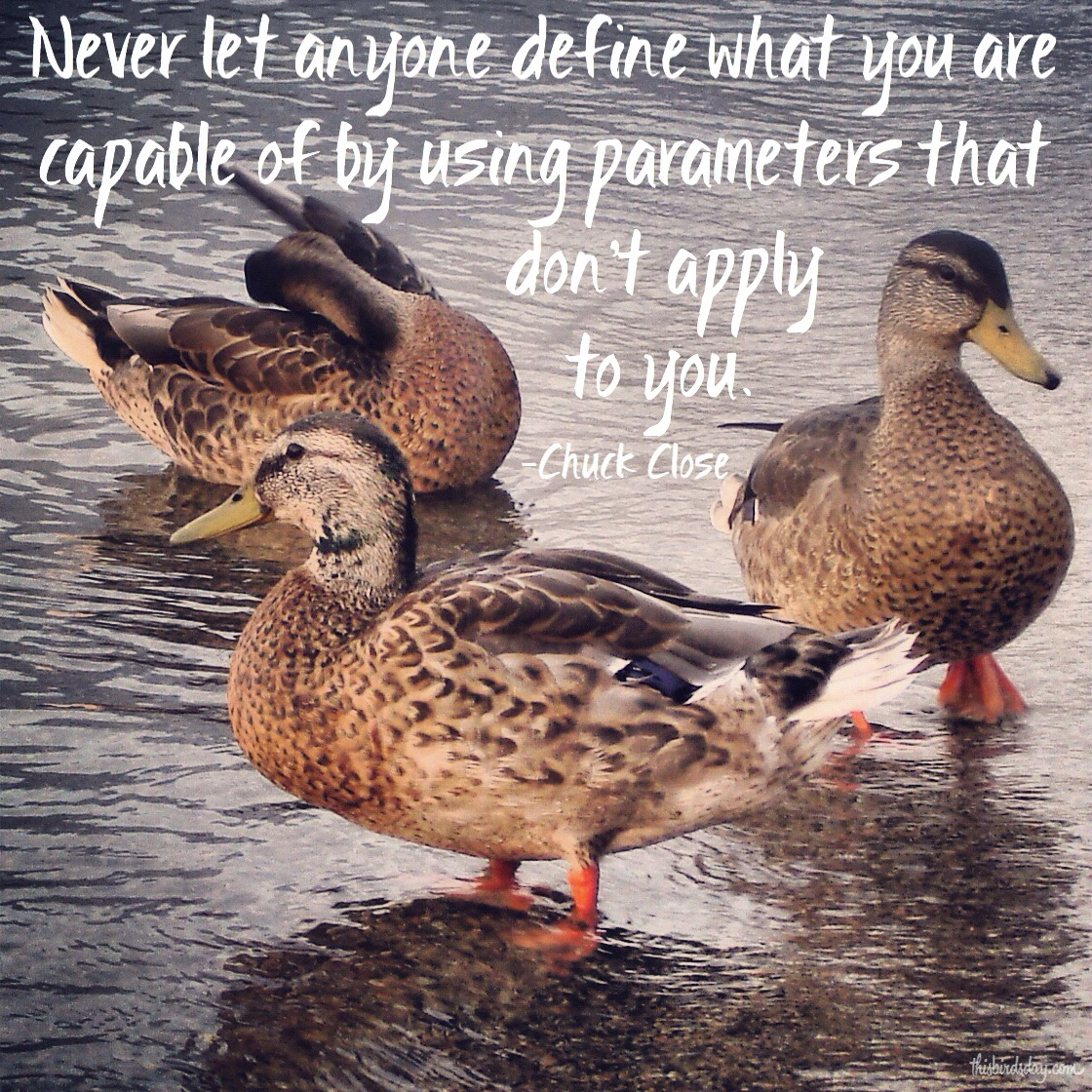 """""""Never let anyone define what you are capable of by using parameters that don't apply to you."""" Chuck Close photo copyright Sheri Landry"""