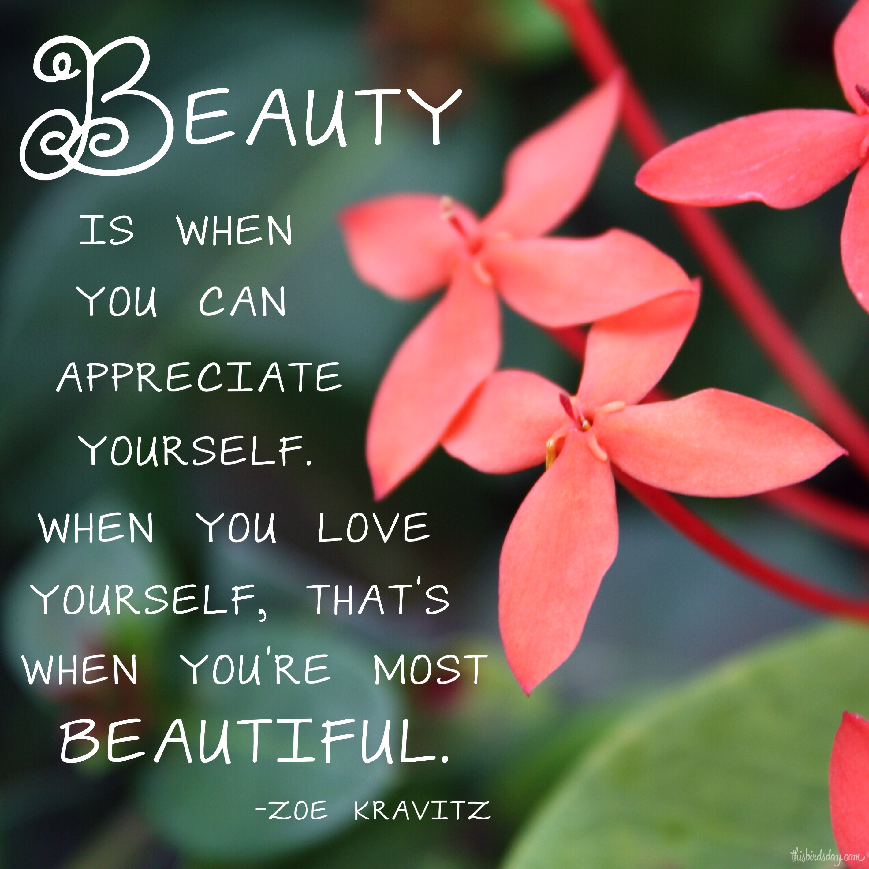 """Beauty is when you can appreciate yourself. When you love yourself, that's when you're most beautiful."" Zoe Kravitz"