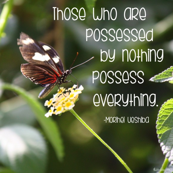 """Those who are possessed by nothing possess everything."" Morihei Ueshiba photo copyright Sheri Landry"
