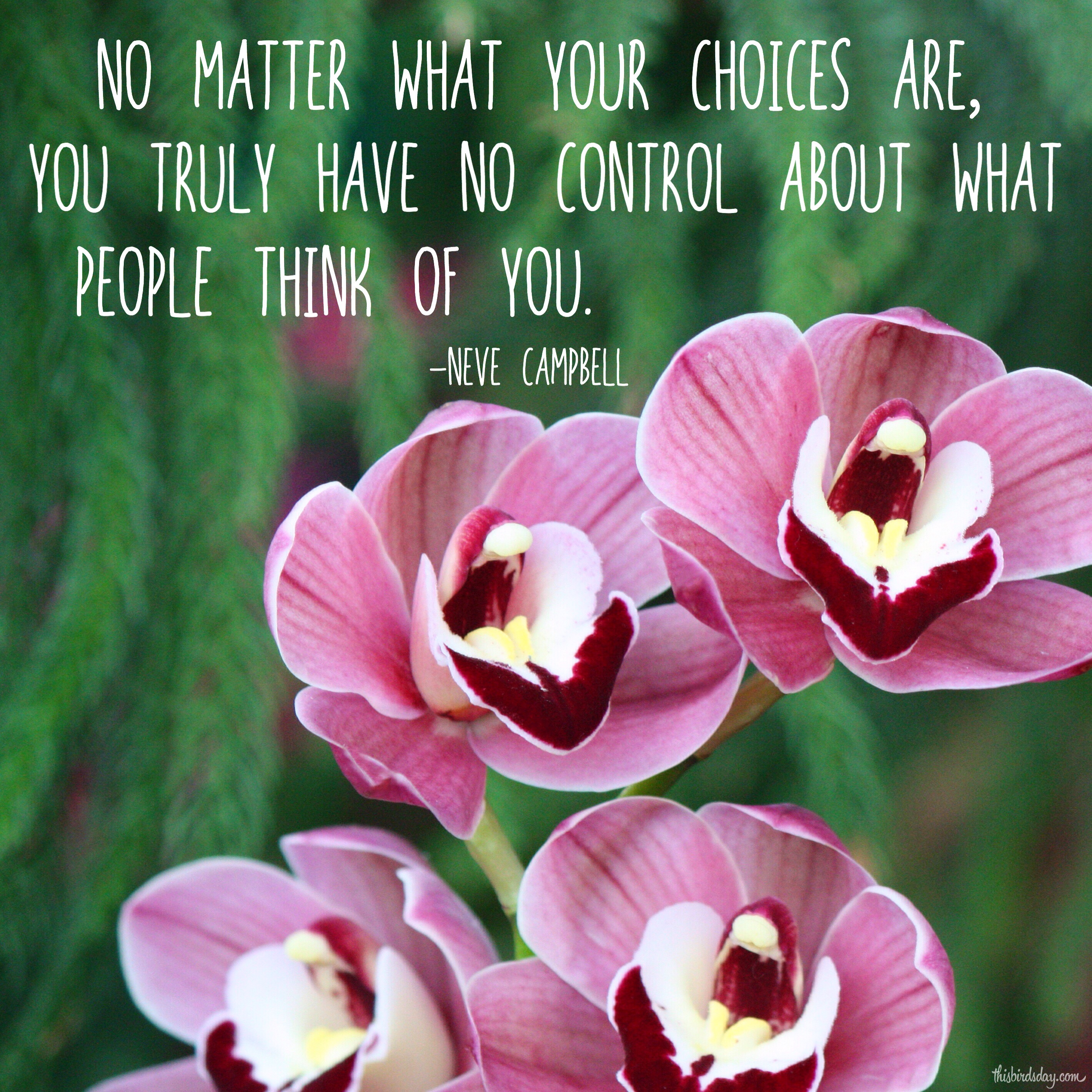 """No matter what your choices are, you truly have no control aboute what people think of you."" Neve Campbell Photo copyright Sheri Landry"