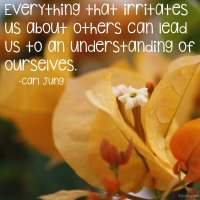 """""""Everything that irritates us about others can lead us to an understanding of ourselves."""" Carl Jung Photo copyright Sheri Landry"""