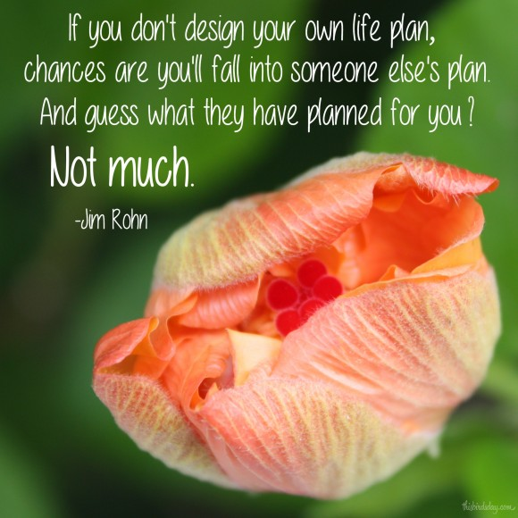 """If you don't design your own life plan, chances are you'll fall into someone else's plan. And guess what they have planned for you? Not much."" Jim Rohn Photo copyright Sheri Landry"