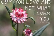 Day 103: You are what you love and not what loves you