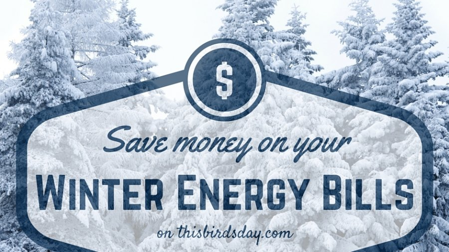 Save money on your winter energy bills