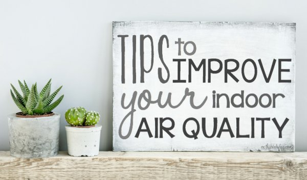 Tips to improve the indoor air quality of your home. Original photo by Jusakas on Fotolia.