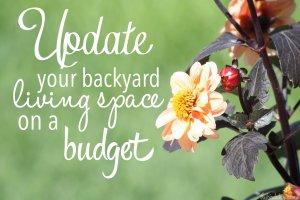 Update_backyard_budget