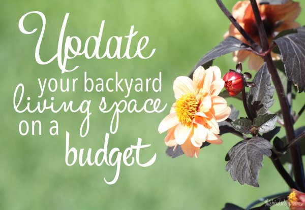 Update_backyard_budget