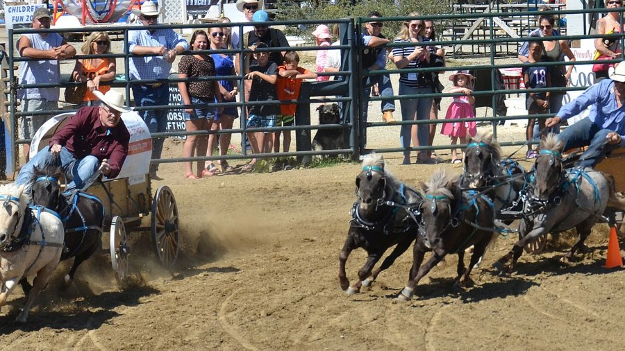 Get in touch with Alberta's cowboy culture at the Cochrane Fair