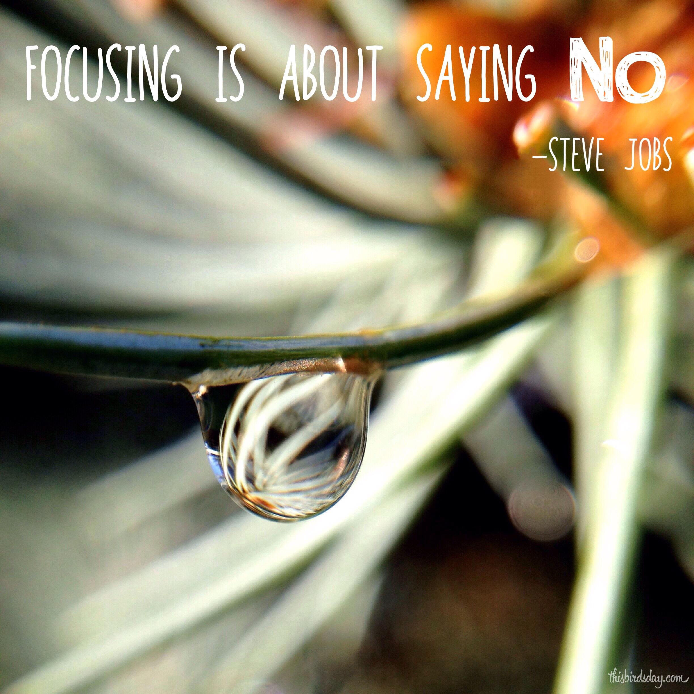 """Focusing is about saying No."" Steve Jobs. Photo copyright Sheri Landry"