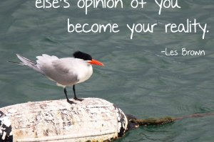 """Don't let someone else's opinion of you become your reality."" Les Brown Photo Copyt=right Sheri Landry"