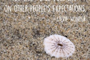 """You can't base your life on other people's expectations."" Stevie Wonder Photo copyright Sheri Landry"