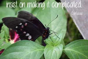 """Life is really simple, but we insist on making it complicated."" Confucius Photo copyright Sheri Landry"