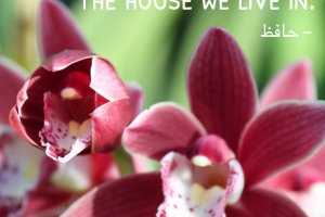 """What we speak becomes the house we live in."" Hāfez Photo copyright Sheri Landry"