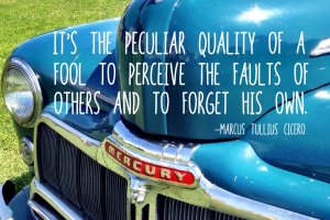 """It's the peculiar quality of a fool to perceive the faults of others and to forget his own."" Marcus Tullius Cicero Photo Copyright Sheri Landry (thisbirdsday.com)"