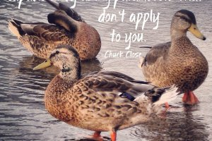 """Never let anyone define what you are capable of by using parameters that don't apply to you."" Chuck Close photo copyright Sheri Landry"