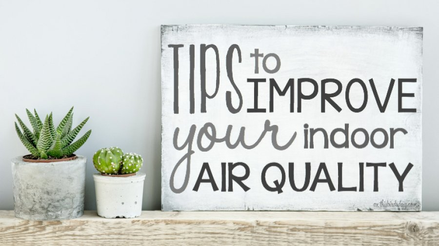 Tips to improve the indoor air quality of your home