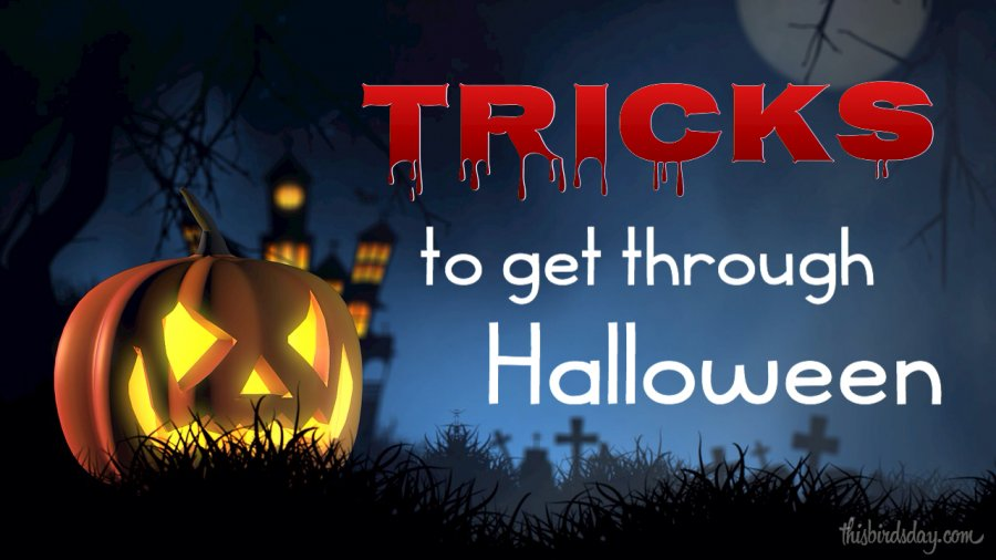 Tricks to Get Through Halloween